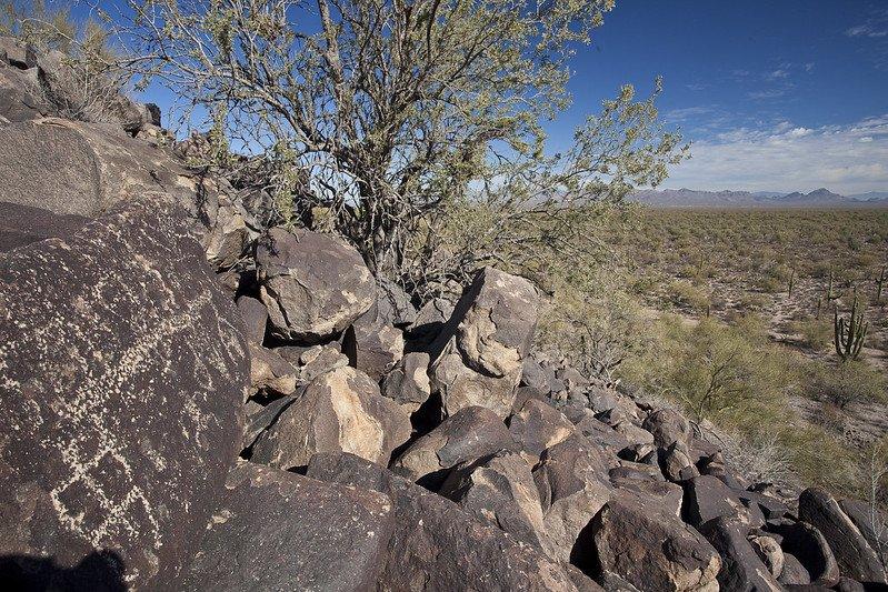 Petroglyphs in desert, Ironwood National Monument