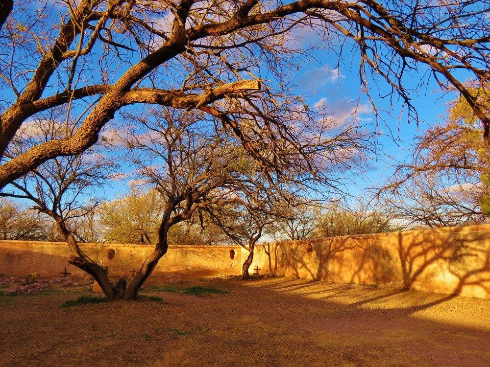 Tumacacori cemetery with trees overhead