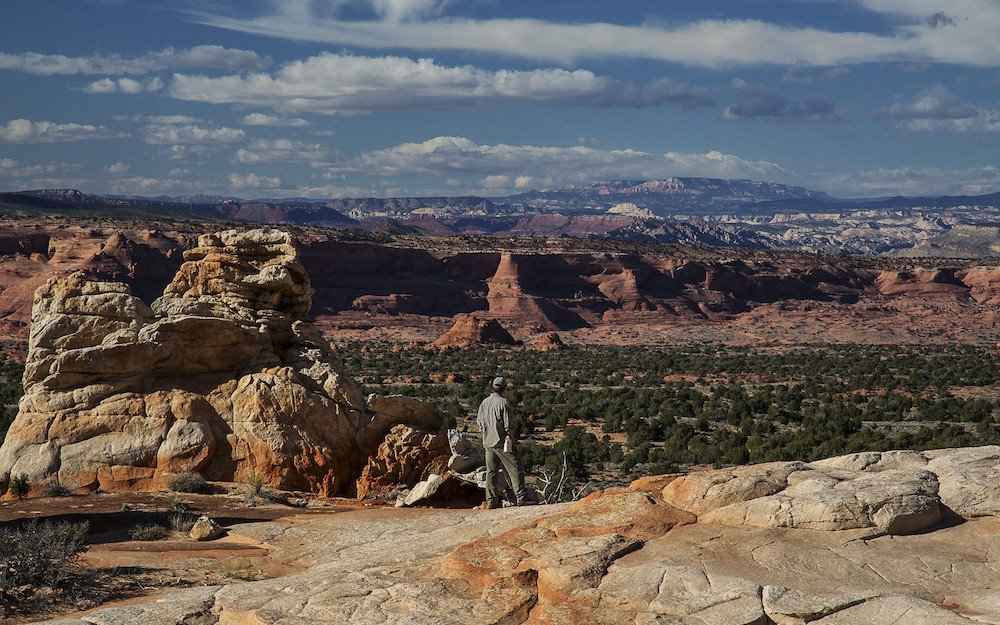 Man looking out over rock formations at Vermillion Cliffs National Monument