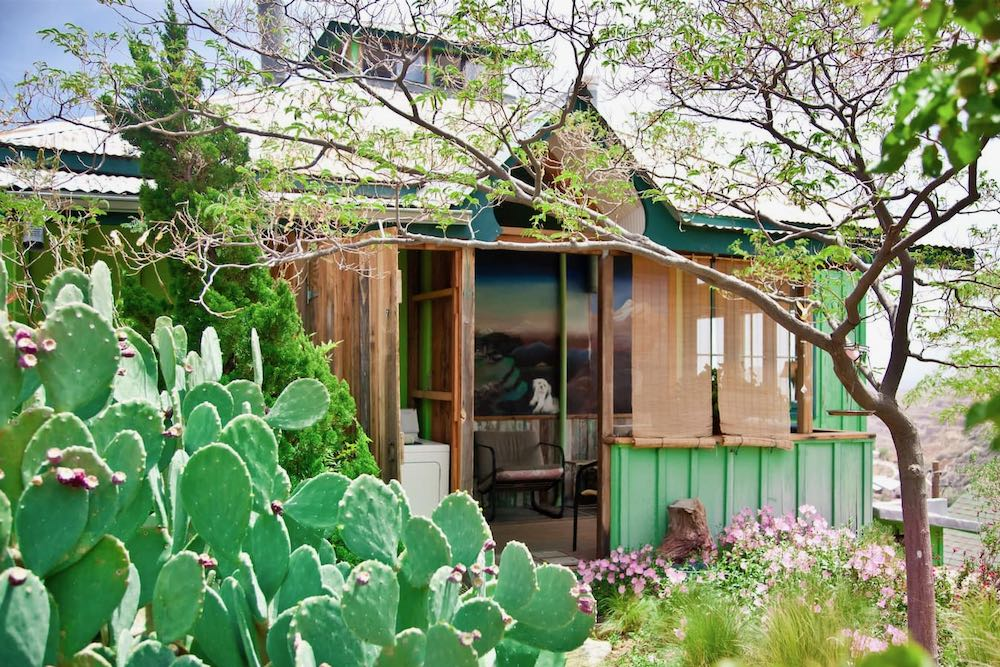 Airbnb Arizona cottage with prickly pear cactus out front