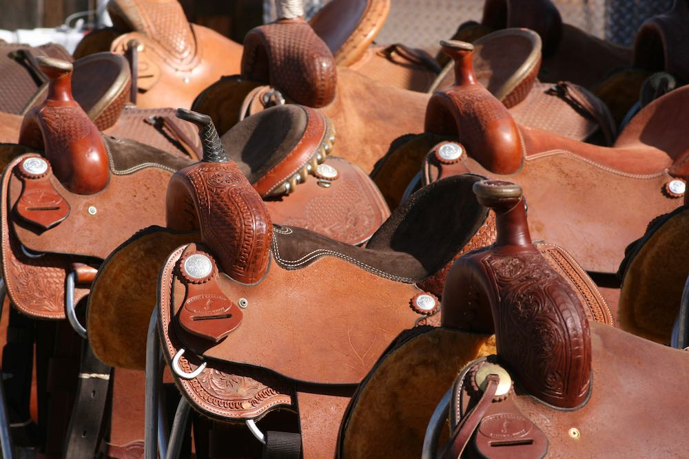 A collection of western saddles from the Tucson Rodeo Parade museum