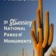 Arizona National Parks & Monuments, USA-Saguaro cactus