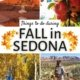 montage of things to do in sedona in the fall-yoga by red rocks, apples on tree, hiker in the desert, aspen trees with yellow foliage