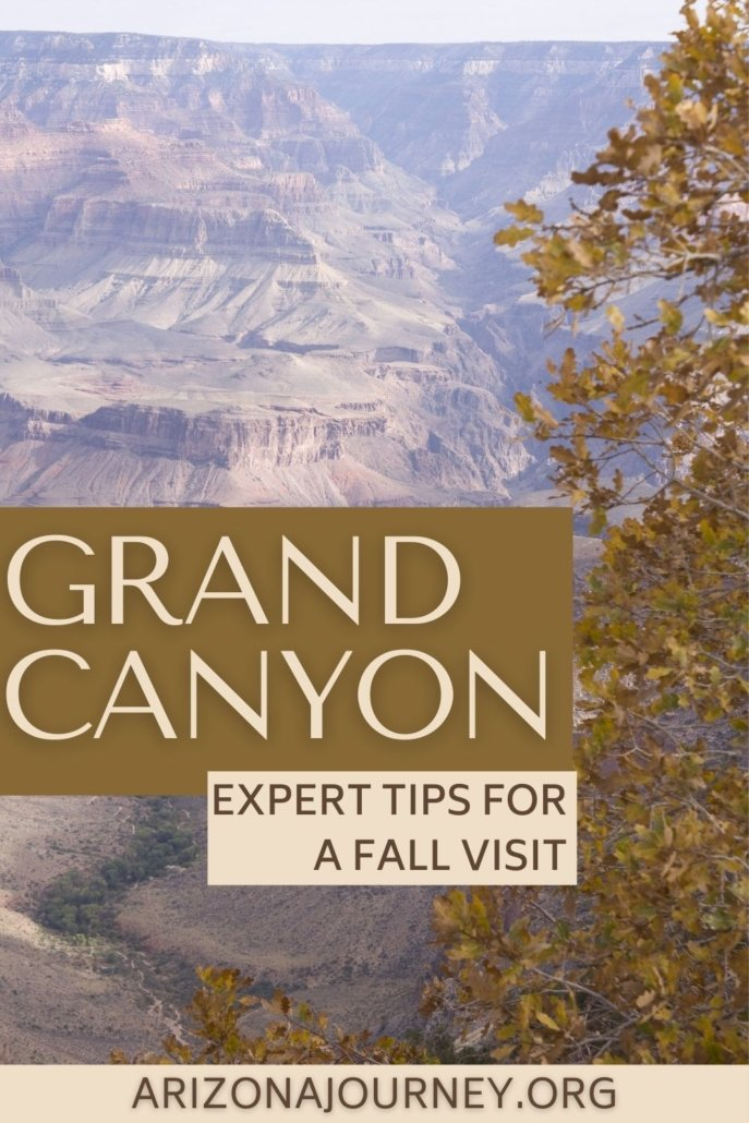 View of Grand Canyon in November-oak tree in foreground with text overlay
